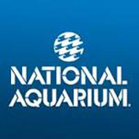 national_aquarium_aquariums_in_maryland