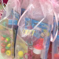 backyard-inflatables-party-favors-for-kids-in-md