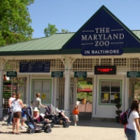 maryland-zoo-unique-birthday-party-ideas-md
