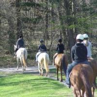 Wheaton Park Stables Maryland Horseback Riding
