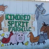 Kindred Spirit Farm Horseback Riding in MD