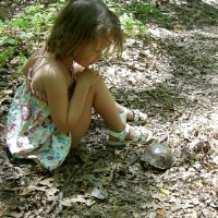 Oregon Ridge Nature Center Day Trips for Kids in MD