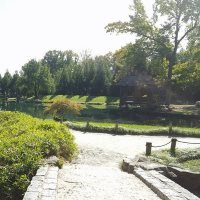 Check Out These Gardens And Arboretums In Md