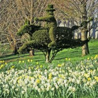Ladew Topiary Gardens Arboretums in Maryland
