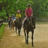 Woodland Horse Center Horseback Trail Riding in Maryland