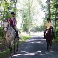 Country Comfort Farm Horseback Riding Lessons in Maryland