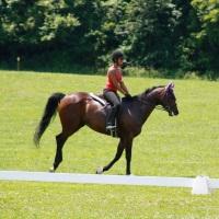 Equilibrium Horse Center Horseback Riding In Maryland