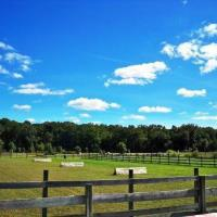 Holly Ridge Farm Equestrian Center Maryland Horseback Trail Riding Companies