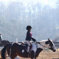 Potomac Horse Center Horseback Riding In Maryland