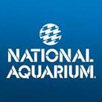 national_aquarium_aquariums_in_maryland