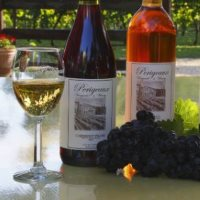 Perigeaux Vineayrds and Winery Best Wineries in Maryland
