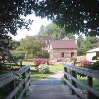 Surreybrooke Arboretums in Maryland